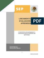 lineamientos_evaluacion_aprendizaje_082009.pdf