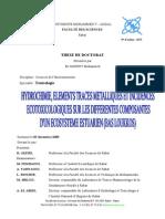 THESE_EL+MORHIT à suivre.pdf