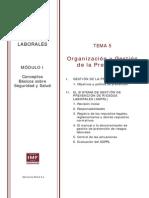 MPRL_Mod1_Tema5.pdf