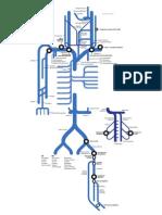 Sistema venas como un mapa de metro