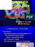 REPORT Lymphatic Blood Vessel