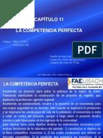 Unidad_I_Cap_11_C_Perfecta_195751.ppt