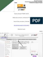 MANUAL SISUP 2013.pdf