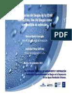BIOGAS VRS AUTOMOVIL.pdf