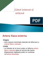 Artera Iliaca Interna Si Externa