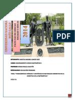 TRABAJO COMPLEMENTARIO.docx