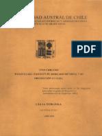 Vino chileno razones del éxito.pdf