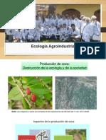 Ecologia_Agroindustrial_IMPACTOS_DE_LA_COCA.pptx