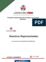 Principios Fundamentales para el Trabajo, Seleccion AE.pptx