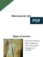 2. Deteccion de celo (NLBC).ppt