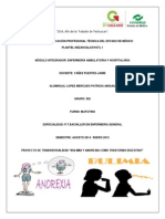 PROYECTO DE TRASVERSALIDAD.docx