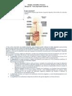 Ámbito  Científico-Técnico - Para Aprender hazlo tú  Bloque IV - Respuestas.docx