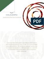 Business Brochure Virtual.pdf