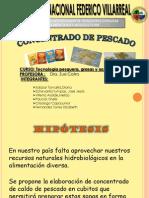 concenttrado de pescado.pdf