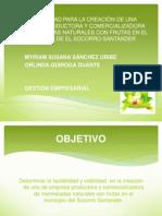 idea_2115341-2115299.pdf
