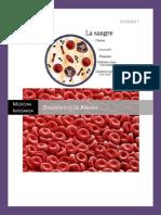Diagnostico de anemia..docx