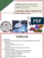 Micro-organismos indicadores.pptx