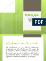 Marihuana.Q.pptx