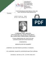 BUCIO (2007) CIERRE DEL TELON UN PASAJE AL ACTO SUCIDA EL CASO DE CSIDONIE CSILLAG Tesis.pdf
