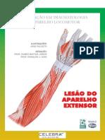 Traumas da mão.pdf