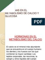 HORMONAS EN EL METABOLISMO DE CALCIO Y GLUCOSA.pptx