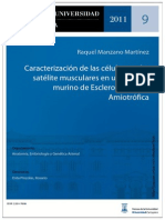 Regeneracion muscular.pdf