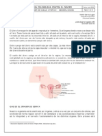 cancer de cervix.pdf