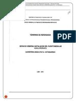 TDR - HUALLPACHACA-Apurimac.docx