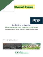 REDES INTELIGENTES LIBRO CON 11 CONFERENCIAS EUROPA.pdf