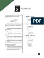 Factorizaci+¦n.pdf
