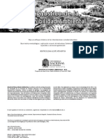 libro final idea.pdf