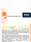LIBERTAD SINDICAL.ppt
