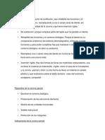 2 da presentacion soporte teorico.docx