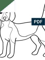 Sistema IBEG Concursos.pdf