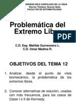 PPR TEMA 12 PROBLEMATICA DEL EXTREMO LIBRE.pdf
