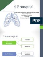 Árbol Bronquial..pptx
