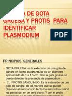 58975875-Tecnica-de-Gota-Gruesa-y-Protis-Para-Identificar.pptx