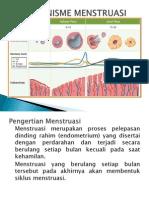 Mekanisme Menstruasi.ppt