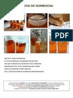CoctelesVivosDeKombucha_AnaMoreno(1).pdf