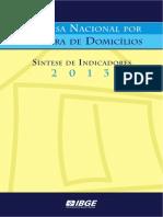 sintese_pnad2013.pdf