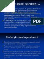 Embriologie 1