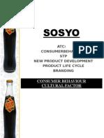 Sosyo Final Present
