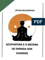 Acunpuntura e o sistema de energia dos chakras.pdf