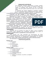 TEHNOLOGIA GUSTARILOR.docx