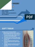 soft tissue injuri.ppt