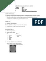 prosedur pembuatan algatamia