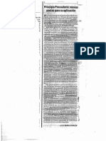 Principio precautorio pautas para su aplicación.pdf