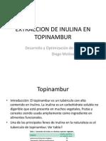 EXTRACCION DE INULINA EN TOPINAMBUR.pptx