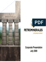 petrominerales.pdf