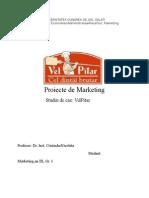 115488104 Proiecte de Marketing Studiu de Caz VelPitar